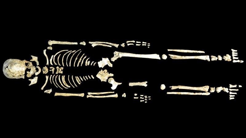 Một bộ xương 8.400 năm tuổi từ khu khảo cổ hang động ở Phúc Kiến, Trung Quốc. Ảnh minh họa: nature.com