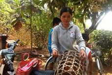 """Phong tục """"Khai bươn"""" của người Tày - Nùng ở Cao Bằng"""