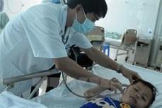 Hà Nội: 51 học sinh tiểu học Yên Sở bị ong đốt đã xuất viện