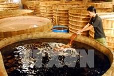 Bộ Y tế: 100% mẫu nước mắm đều an toàn