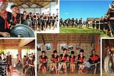 Ngày hội văn hóa, thể thao và du lịch các dân tộc vùng Tây Nguyên lần thứ I sẽ được tổ chức tại Gia Lai
