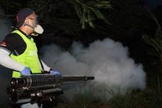 Sử dụng thêm kỹ thuật mới phun diệt muỗi phòng chống vi rút Zika