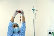 Ghép tế bào gốc, hồi sinh những cuộc đời
