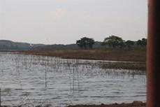 Cảnh báo đuối nước trong mùa hè tại các ao, hồ, đập