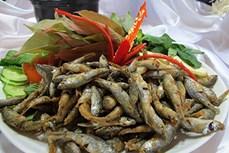 Nhiều món ngon từ cá linh