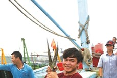 Tấp nập chợ cá Hàm Tử