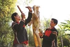 越南埃地族独特的雕塑艺术