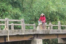 Nỗi lo trên những cây cầu dân sinh xuống cấp ở vùng rốn lũ Quảng Trị