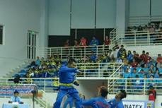 第25届全国越武道锦标赛开幕