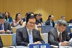 越南代表当选世界知识产权组织总干事:越南多边外交活动的新里程碑