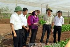 Hà Nội đầu tư xây dựng nông thôn mới
