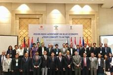 """""""东盟—印度:蓝色经济—从概念到行动""""的研讨会在越南庆和省举行"""
