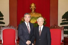 越共中央总书记阮富仲会见中国外交部长王毅。(图片来源:越通社)