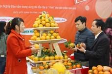 Cam Vinh được cấp chứng nhận chỉ dẫn địa lý