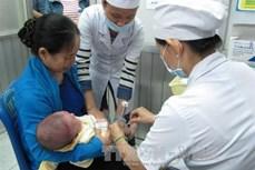 Thành phố Hồ Chí Minh cảnh báo bệnh thủy đậu chuẩn bị vào mùa