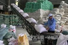 Hơn 92% lượng gạo xuất khẩu là hợp đồng thương mại