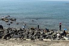 Quảng Trị tăng cường quảng bá tiềm năng du lịch biển đảo Cồn Cỏ