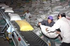 Đổi mới để gạo Việt Nam có giá trị cao hơn