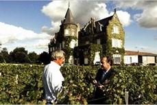 """Bordeaux – """"thủ phủ"""" của rượu vang"""