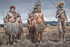Cuộc sống nguyên thủy giữa thế giới văn minh của bộ tộc Dani ở Indonesia