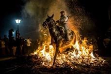 Ngoạn mục màn phi ngựa qua lửa ở Tây Ban Nha