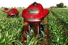 Đẩy mạnh ứng dụng khoa học công nghệ vào sản xuất nông nghiệp (Bài 3 và hết)