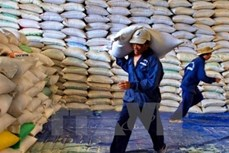 越南朔庄省应加大对澳大利亚市场出口力度
