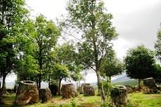 Kỳ bí cánh đồng chum ở Lào
