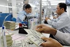 11日越盾兑美元中心汇率保持稳定