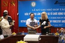Việt Nam tăng cường bảo tồn loài gấu