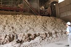 Trà Vinh xây dựng nhà máy sản xuất phân hữu cơ vi sinh từ bã bùn mía