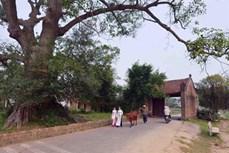 Tu bổ, tôn tạo các di tích ở làng cổ Đường Lâm