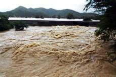 Lũ trên sông Thao, sông Chảy đang lên, đề phòng lũ quét và sạt lở đất ở khu vực vùng núi phía Bắc