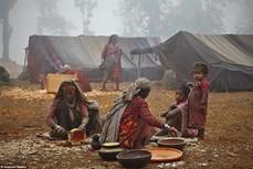 Những bộ tộc nguyên thủy