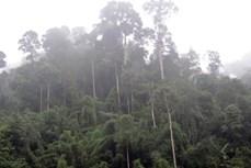 Phát triển bền vững Khu Dự trữ sinh quyển miền Tây Nghệ An
