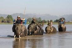 Phát triển du lịch cộng đồng, thu hút du khách đến Đắk Lắk