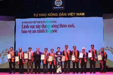 """""""2018年越南优秀农民""""称号授予仪式在河内举行"""
