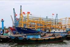 越南海洋战略实施10年:越南在海洋岛屿资源管理和环境保护领域取得突破性进展