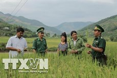Bộ đội Biên phòng Sơn La hỗ trợ đồng bào vùng biên xây dựng nông thôn mới