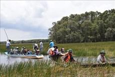Ramsar Tràm Chim vào mùa nước nổi