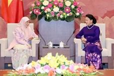 越南国会主席阮氏金银会见马来西亚副总理