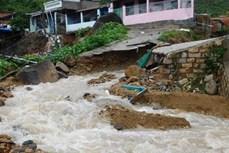越南政府总理下达公函 指导有关省市和部委展开第九号台风应对工作