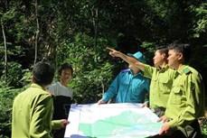 Tuyên Quang xã hội hóa công tác bảo vệ rừng