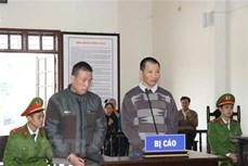 """和平省人民法院以""""非法贩卖和运输毒品""""罪对两名被告人进行判处"""