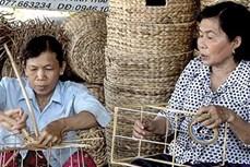 Kiên Giang đào tạo nghề cho hơn 10.880 lao động nông thôn