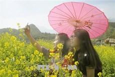 Du lịch Lào Cai - lĩnh vực đột phá kinh tế địa phương