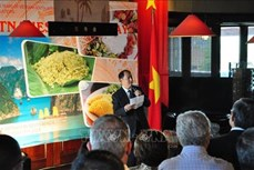 越南向南非友人推介特色文化与美食