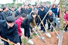 越南国会主席阮氏金银出席海阳省植树节启动仪式