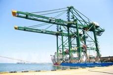 Doosan Vina向印度出口轨道式集装箱门式起重机