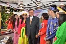 越南参与ASEAN+3节日 希望加强东盟内部及其与各伙伴国之间的信任度和融合度